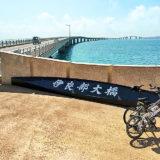 伊良部大橋の入り口付近に自転車を置いて撮影された写真