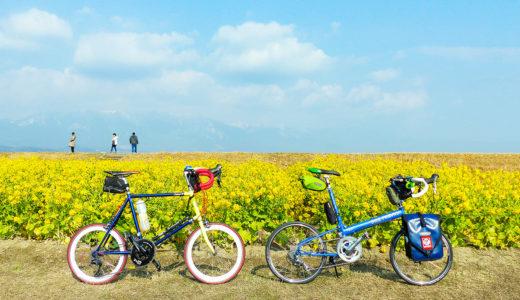 ビワイチのコース沿いで冬に菜の花が見られる『第1なぎさ公園』