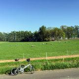 北海道・美瑛の「丘のさんぽ道・ジェラート工房」付近の風景