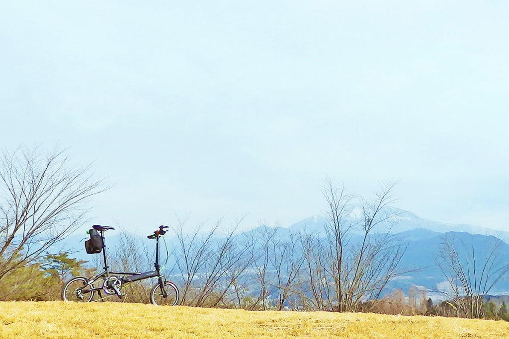 岐阜県恵那市の名所「西行の森」の冬の風景
